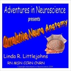Correlative Neuro Anatomy (DVD)
