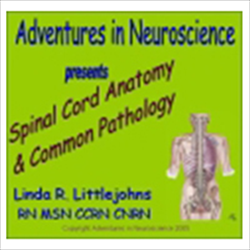 Spinal Cord Anatomy (DVD)